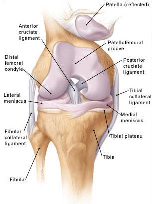 térdízület 2 3 fokos kezelés artrózis mágneses kezelése