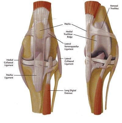 a szakrégió artrózisos kezelése