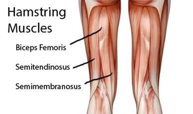 a csuklóízületek ízületi gyulladása a karok és a lábak minden ízülete fáj