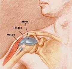 boka alatti csont fájdalom