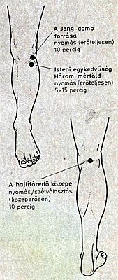 akupunktúra a térd ízületi gyulladás kezelésében