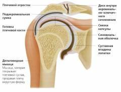 A harmadik fokú térdízület arthrosisának jellemzői, jellemzői - Osteoarthritis
