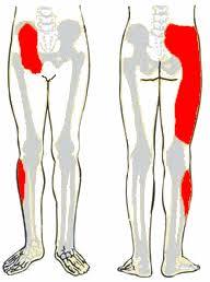 gerinc izületi gyulladás kezelése az aloe ízületi fájdalmainak enyhítése