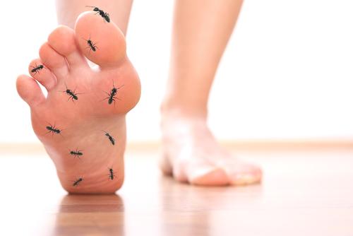 lábujjak zsibbadásának okai artrocorrector balzsam ízületekhez