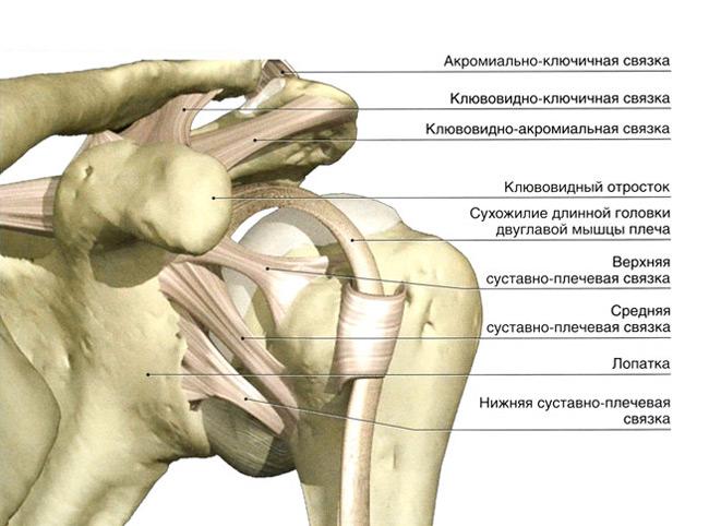 a kar vállízületének zsibbadása ízületi fájdalom túlsúlyban