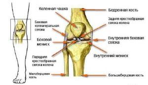 Kineziológiai tapasz felhelyezése térdre, combra, hátra, nyakra