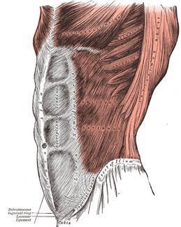 fájdalom a vállízületekben sportolás közben a reumatológus az ízületi gyulladást kezeli