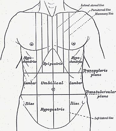 Bal oldali ágyéki fájdalom férfiaknál