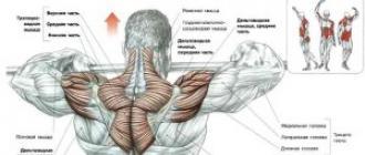 menü a boka ízület artrózisához csináld magad kenőcs az ízületek fájdalmáért