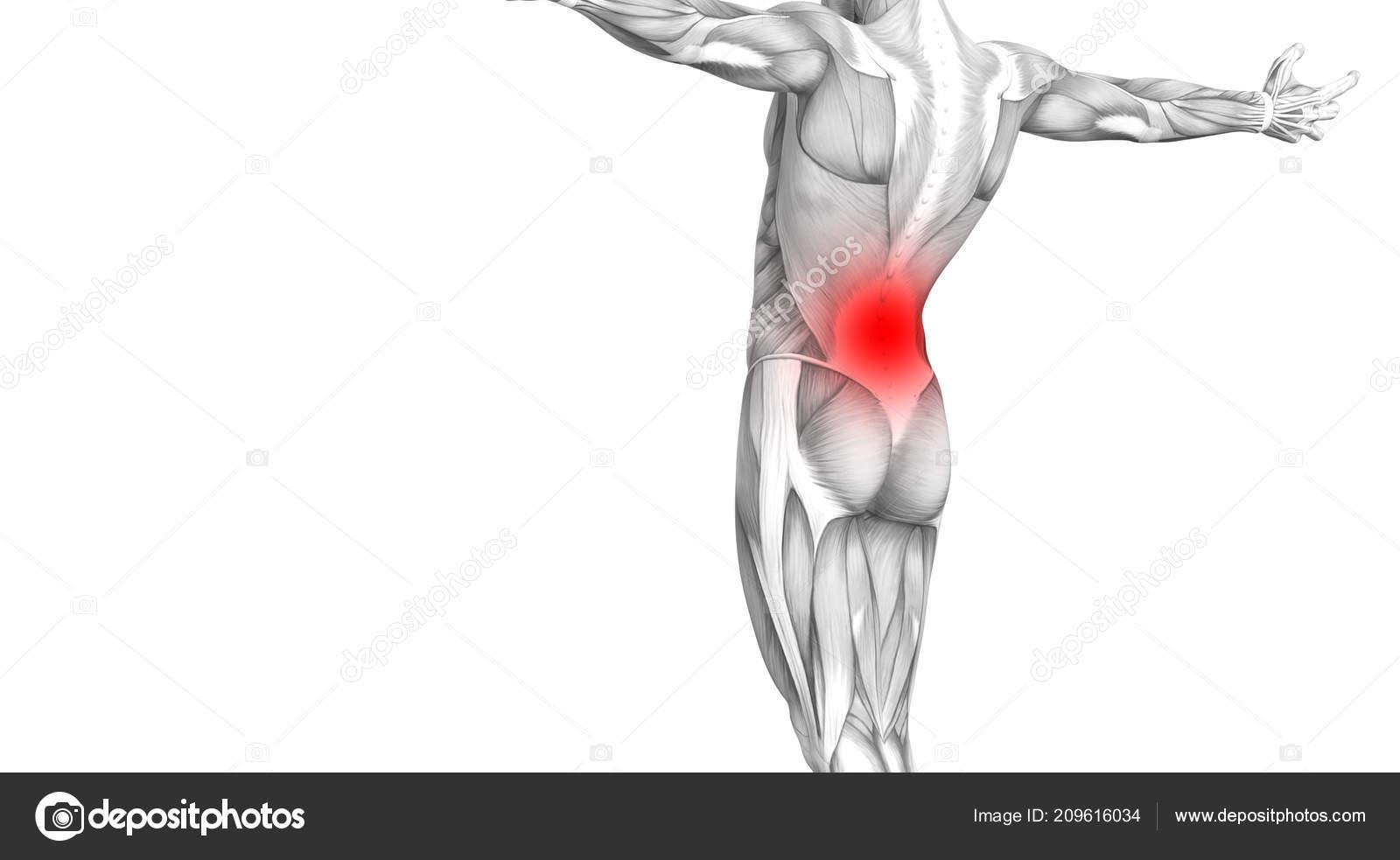 oszteoporózis artritisz kezelése szédül fájó ízületek beteg