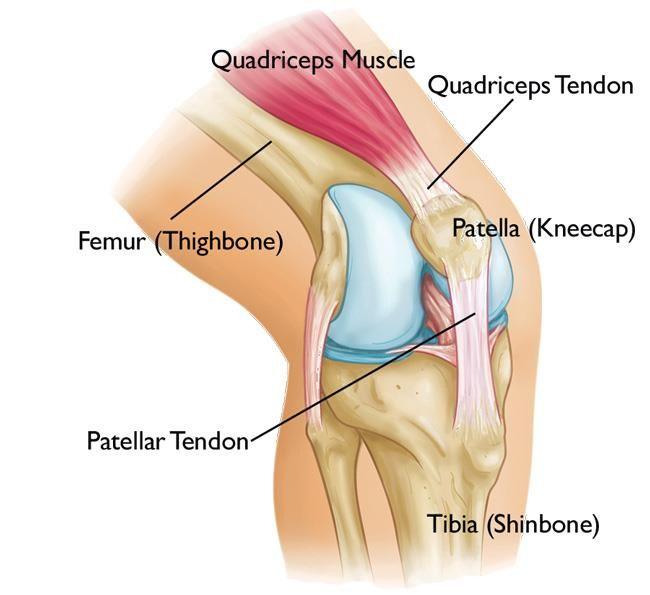 könyök ízületi törés 3 fokos térdízület kezelés artrózisa