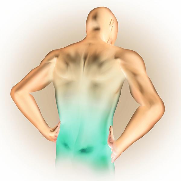 térd osteoporosis artrosis