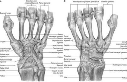 a vállízület posztraumás periarthritis kezelése reumatikus ízületi kezelés