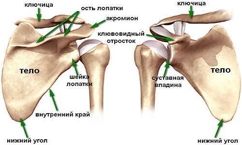 Minden a poszt-traumás arthrosisról