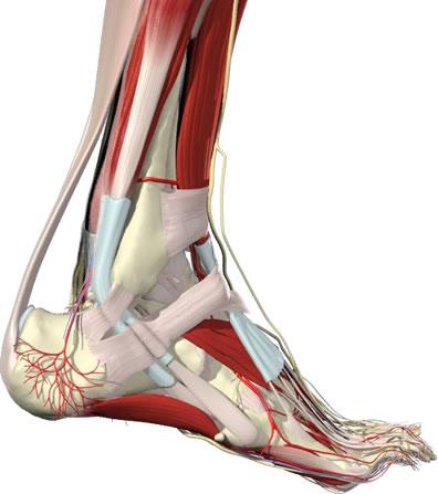 Milyen problémák kezelésére jó az artroszkópia?