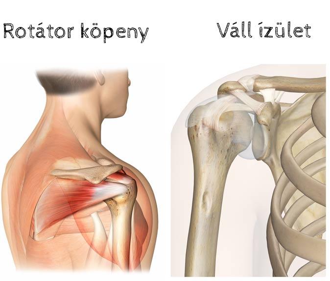 a boka szimmetrikus ízületi gyulladása a jobb csukló ízület posztraumás artrózisa